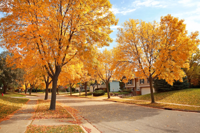 Moving in Fall or Winter - Off Season Moving Edmonton