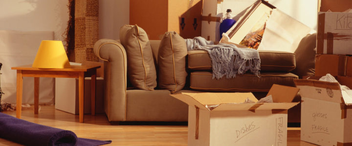 Edmonton Moving Tips: How to Move Large Furniture